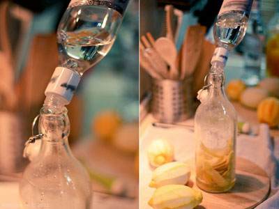 make drinks drinks  Наши ликеры Лимоны Водка Апельсины